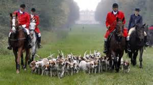Riding to the hounds: A corrupt pastime for degenerates that endures due to snobbishness.
